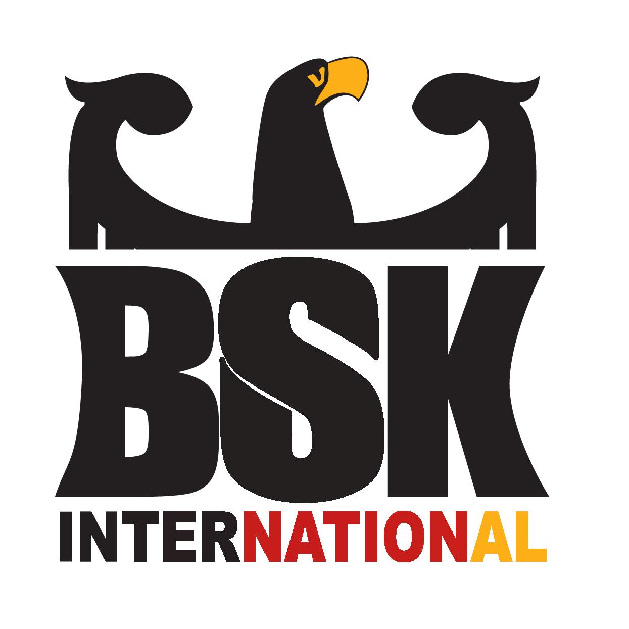 Logo: BSK International gemeinnützige Gesellschaft mbH